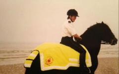 CG_Horse
